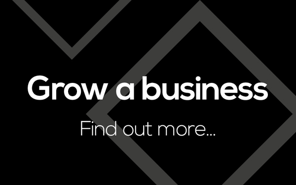grow a business